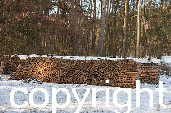 Holzpolter
